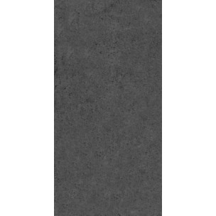 Fossil Matt 600x300 - Black Wall/Floor Tile DEM-FMB3060